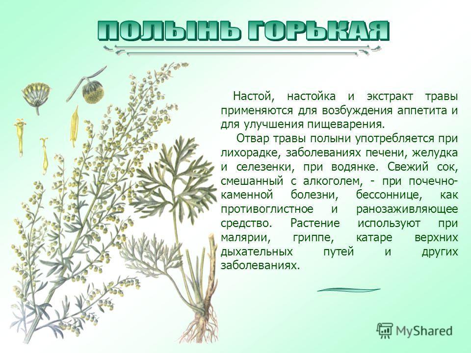Настой, настойка и экстракт травы применяются для возбуждения аппетита и для улучшения пищеварения. Отвар травы полыни употребляется при лихорадке, заболеваниях печени, желудка и селезенки, при водянке. Свежий сок, смешанный с алкоголем, - при почечн