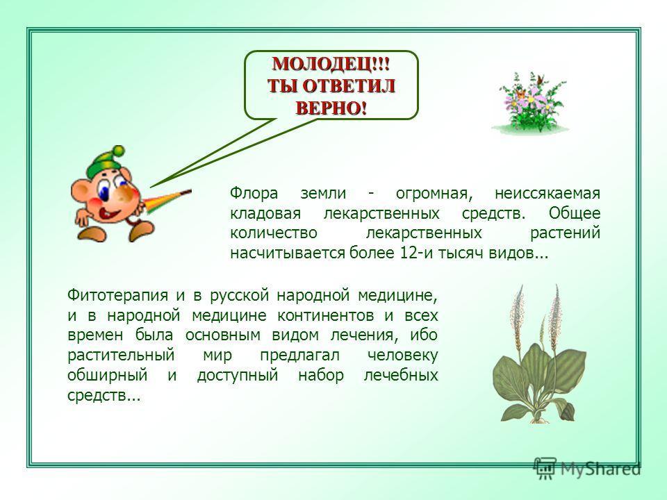 МОЛОДЕЦ!!! ТЫ ОТВЕТИЛ ВЕРНО! Флора земли - огромная, неиссякаемая кладовая лекарственных средств. Общее количество лекарственных растений насчитывается более 12-и тысяч видов... Фитотерапия и в русской народной медицине, и в народной медицине контине