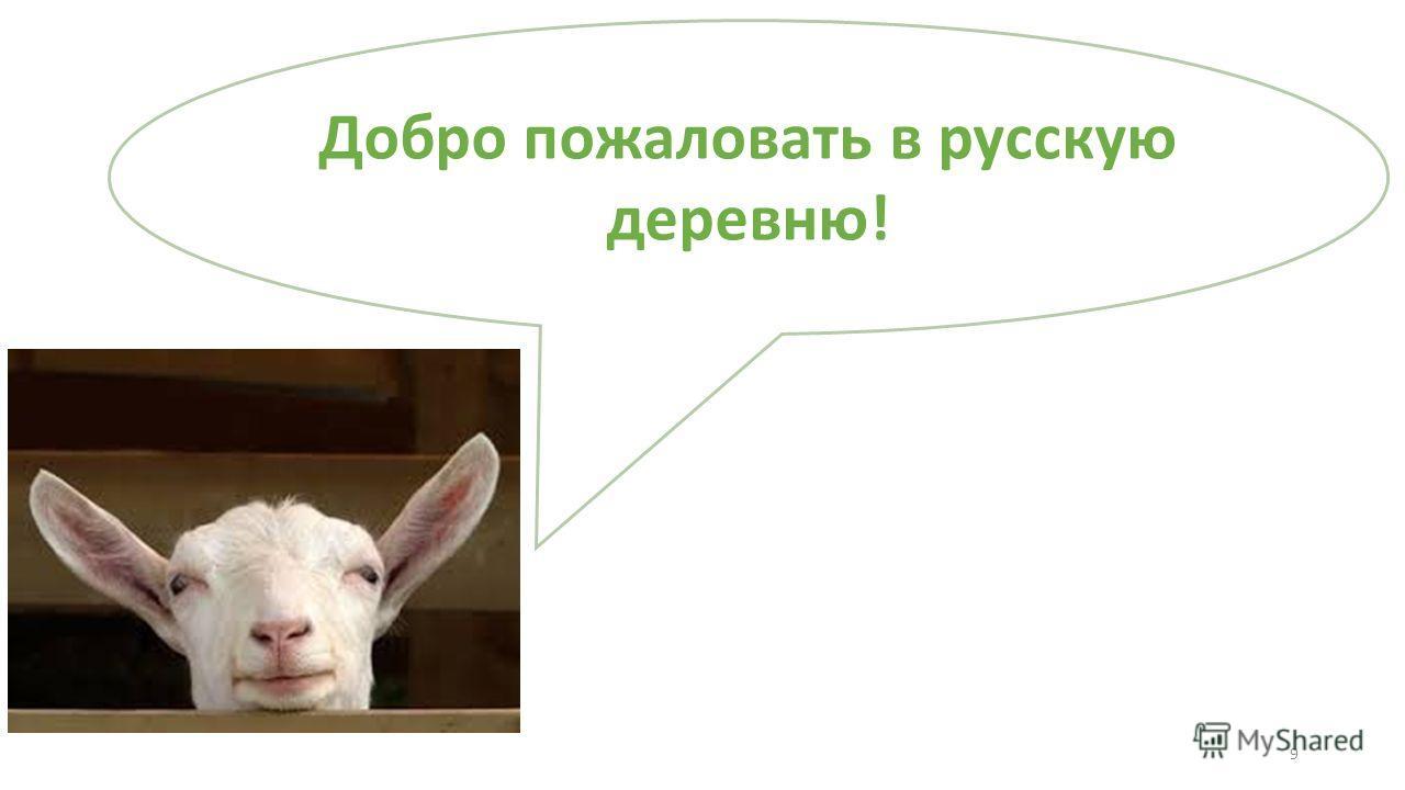 Добро пожаловать в русскую деревню! 9