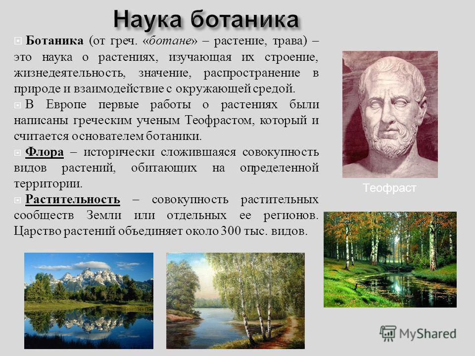 Ботаника ( от греч. « бутане » – растение, трава ) – это наука о растениях, изучающая их строение, жизнедеятельность, значение, распространение в природе и взаимодействие с окружающей средой. В Европе первые работы о растениях были написаны греческим