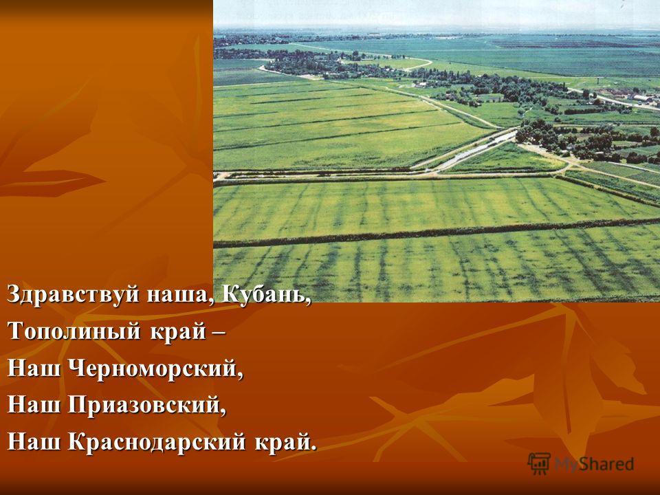 Здравствуй наша, Кубань, Тополиный край – Наш Черноморский, Наш Приазовский, Наш Краснодарский край.