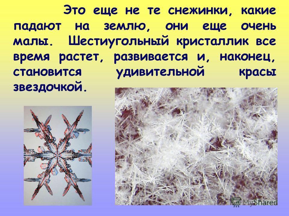 Это еще не те снежинки, какие падают на землю, они еще очень малы. Шестиугольный кристаллик все время растет, развивается и, наконец, становится удивительной красы звездочкой.