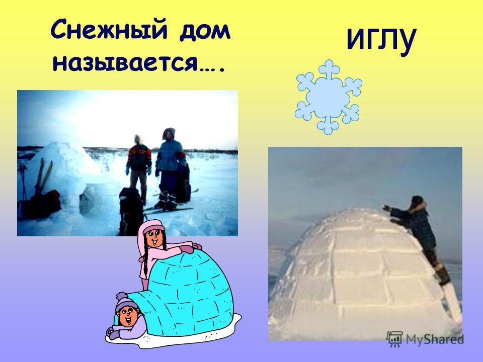 Снежный дом называется….