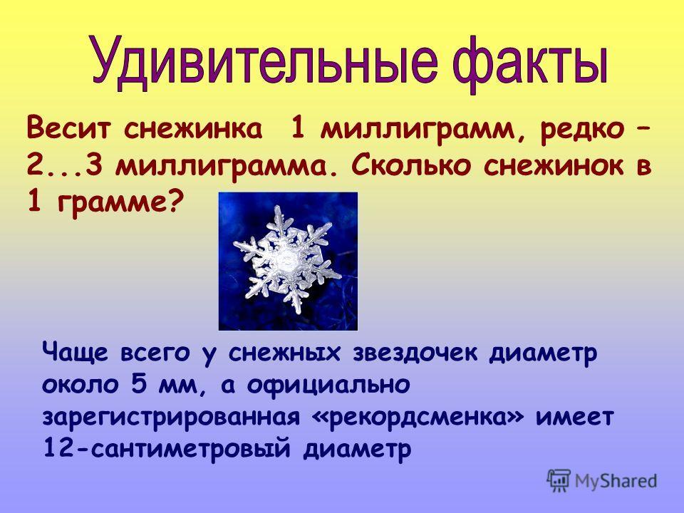 Весит снежинка 1 миллиграмм, редко – 2...3 миллиграмма. Сколько снежинок в 1 грамме? Чаще всего у снежных звездочек диаметр около 5 мм, а официально зарегистрированная «рекордсменка» имеет 12-сантиметровый диаметр