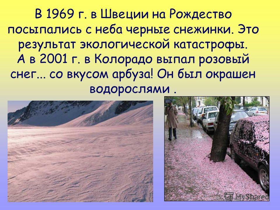 В 1969 г. в Швеции на Рождество посыпались с неба черные снежинки. Это результат экологической катастрофы. А в 2001 г. в Колорадо выпал розовый снег... со вкусом арбуза! Он был окрашен водорослями.