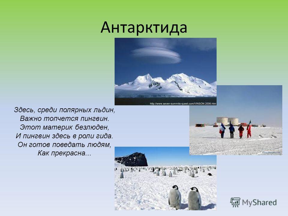 Антарктида Здесь, среди полярных льдин, Важно топчется пингвин. Этот материк безлюден, И пингвин здесь в роли гида. Он готов поведать людям, Как прекрасна...