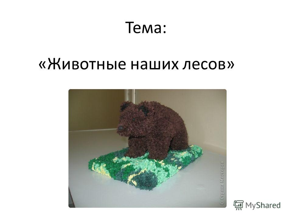 Тема: «Животные наших лесов»