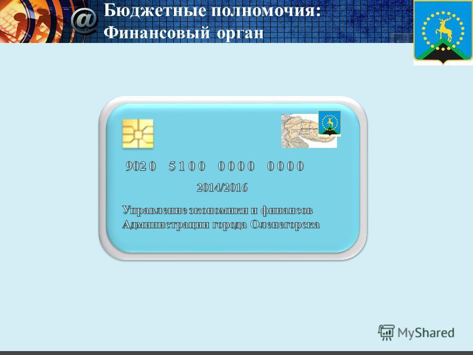 Бюджетные полномочия: Финансовый орган