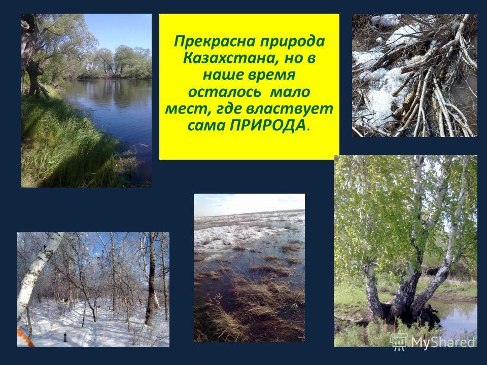 Прекрасна природа Казахстана, но в наше время осталось мало мест, где властвует сама ПРИРОДА.
