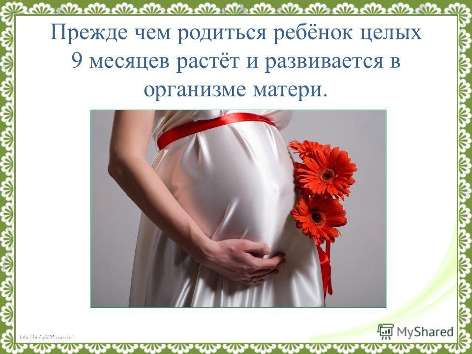 http://linda6035.ucoz.ru/ Прежде чем родиться ребёнок целых 9 месяцев растёт и развивается в организме матери.