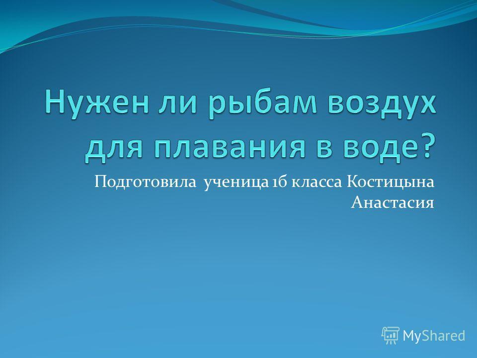 Подготовила ученица 1 б класса Костицына Анастасия