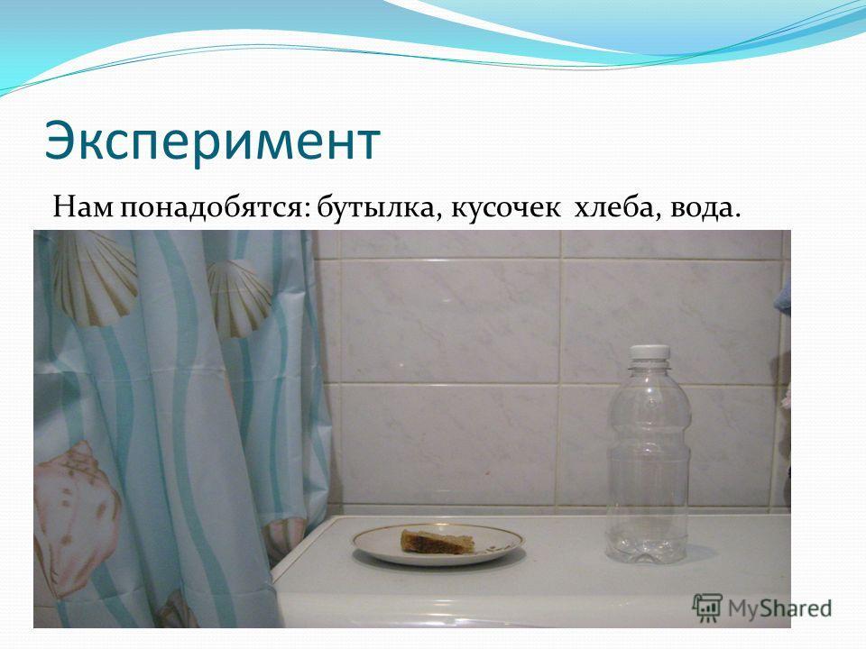 Эксперимент Нам понадобятся: бутылка, кусочек хлеба, вода.
