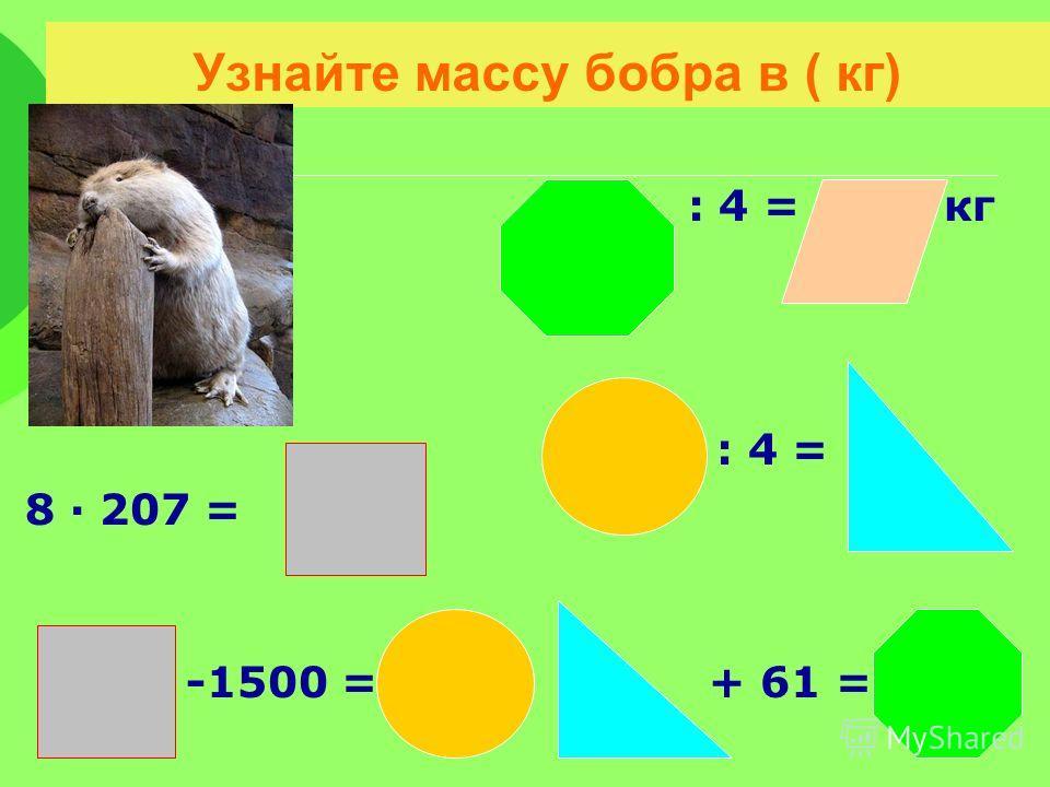 Узнайте массу бобра в ( кг) : 4 = кг : 4 = 8 207 = - -1500 = + 61 =