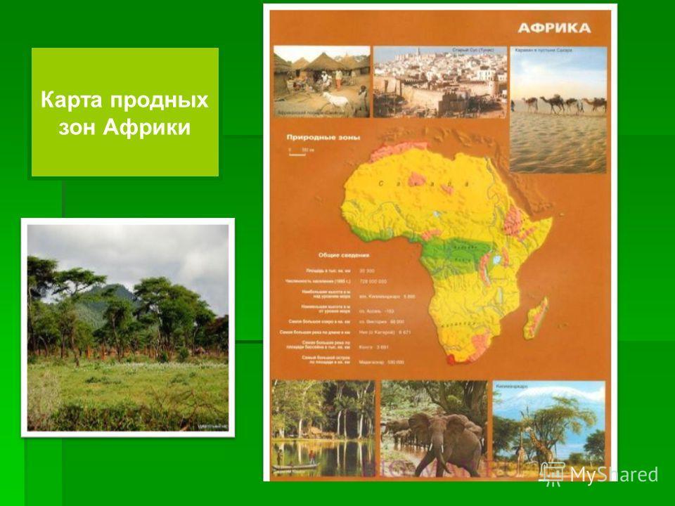 Карта природных зон Африки