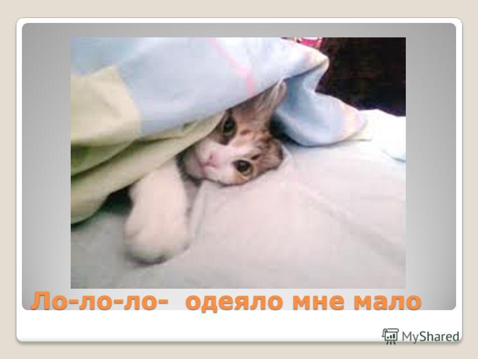 Ло-ло-ло- одеяло мне мало