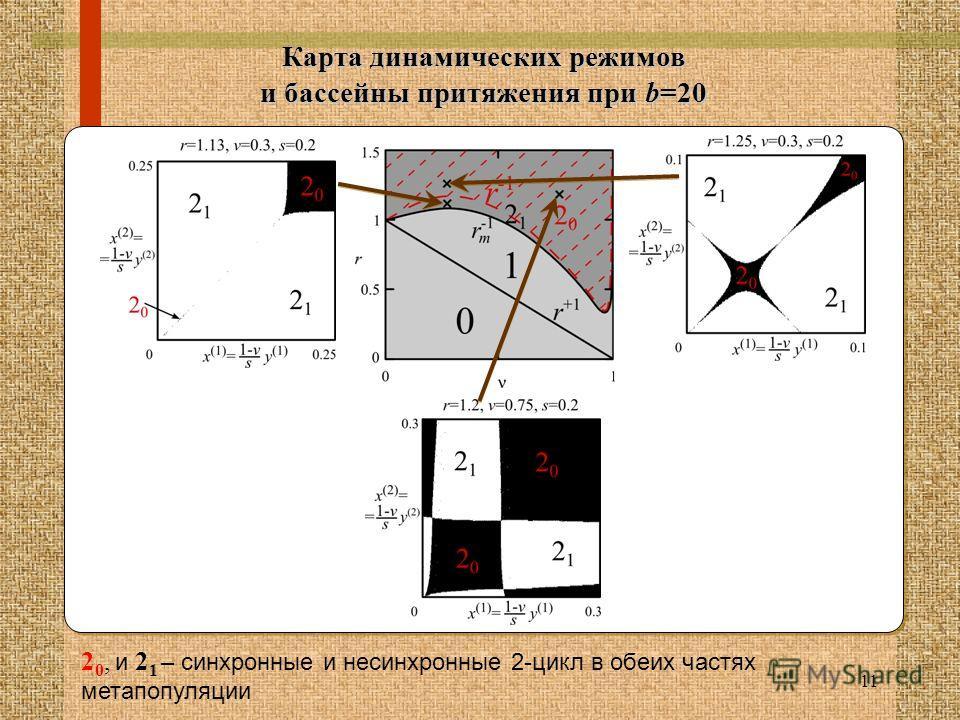11 Карта динамических режимов и бассейны притяжения при b=20 2 0, и 2 1 – синхронные и несинхронные 2-цикл в обеих частях мета популяции