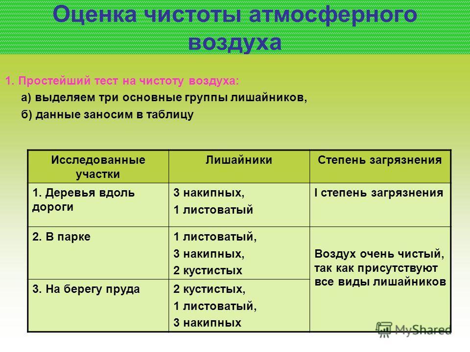 Оценка чистоты атмосферного воздуха 1. Простейший тест на чистоту воздуха: а) выделяем три основные группы лишайников, б) данные заносим в таблицу Исследованные участки Лишайники Степень загрязнения 1. Деревья вдоль дороги 3 накипных, 1 листоватый I