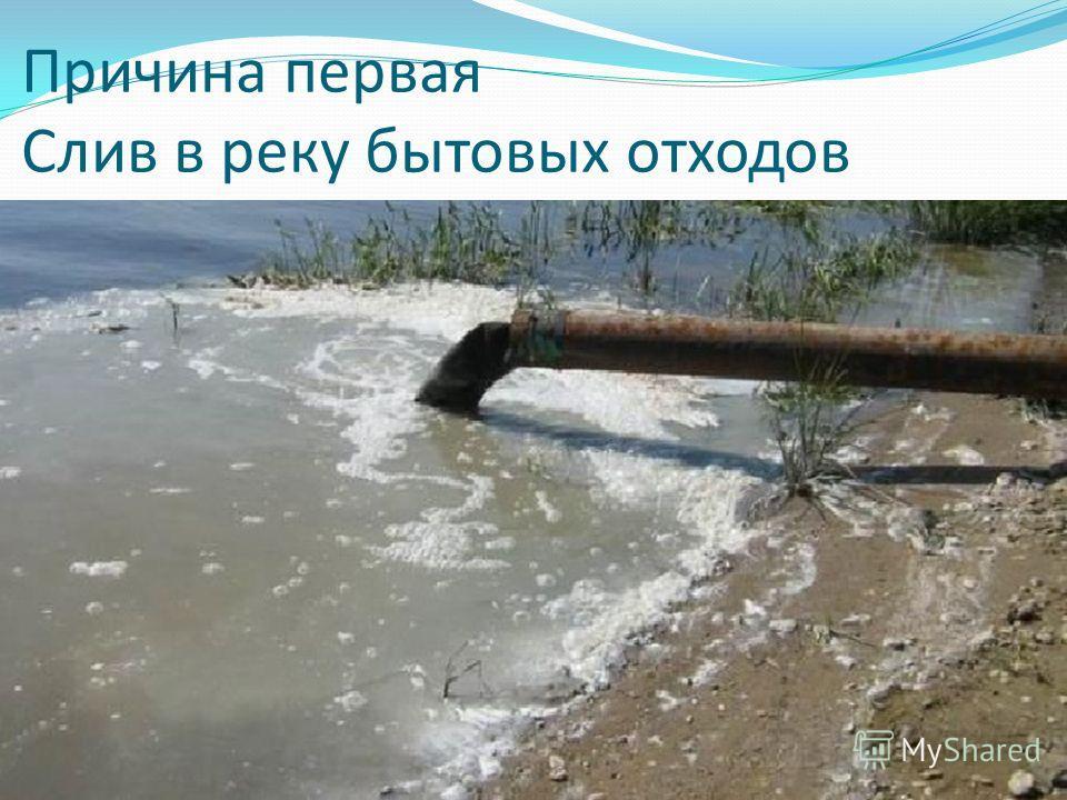 Причина первая Слив в реку бытовых отходов