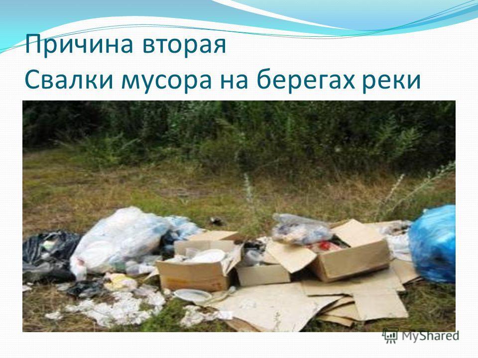 Причина вторая Свалки мусора на берегах реки