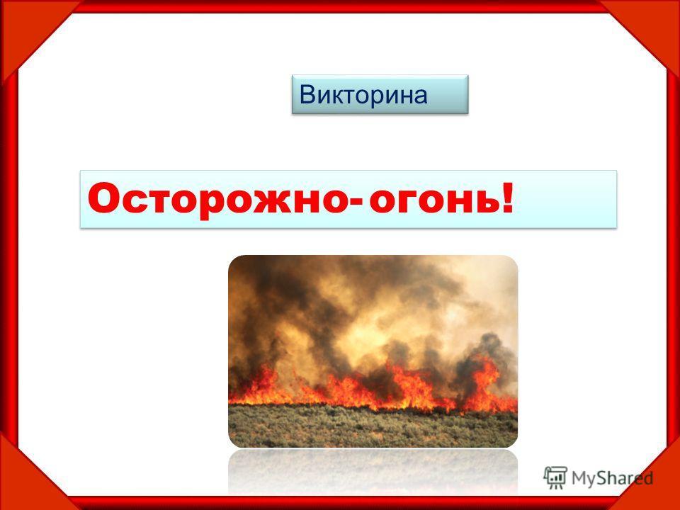 Викторина Осторожно- огонь!