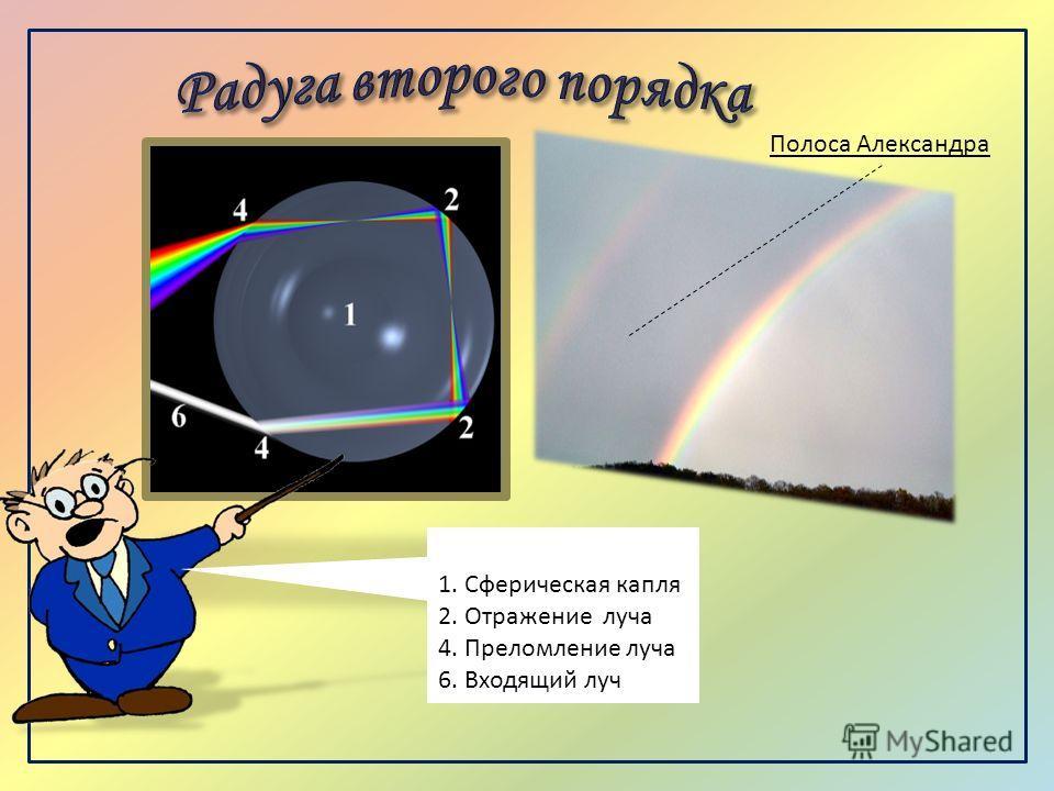 1. Сферическая капля 2. Отражение луча 4. Преломление луча 6. Входящий луч Полоса Александра