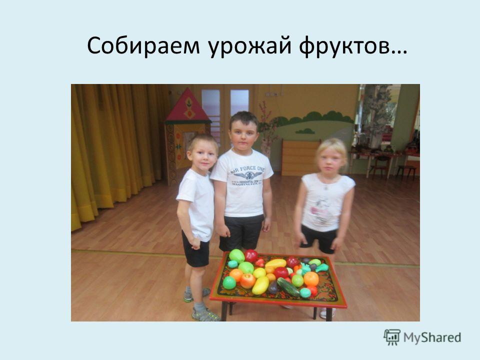 Собираем урожай фруктов…