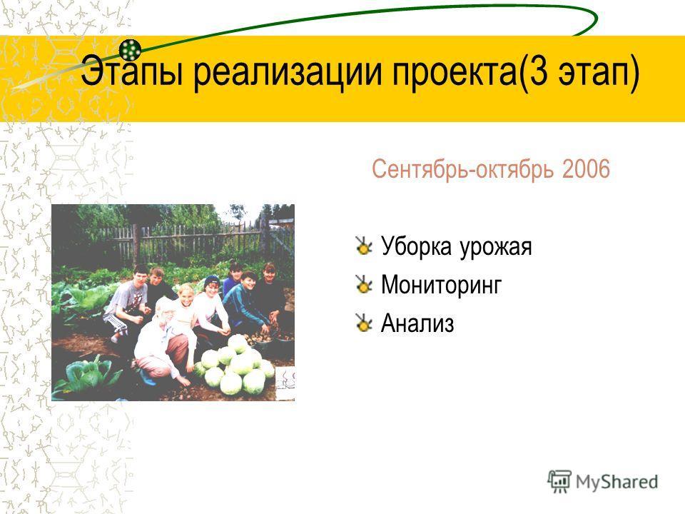 Этапы реализации проекта(3 этап) Сентябрь-октябрь 2006 Уборка урожая Мониторинг Анализ