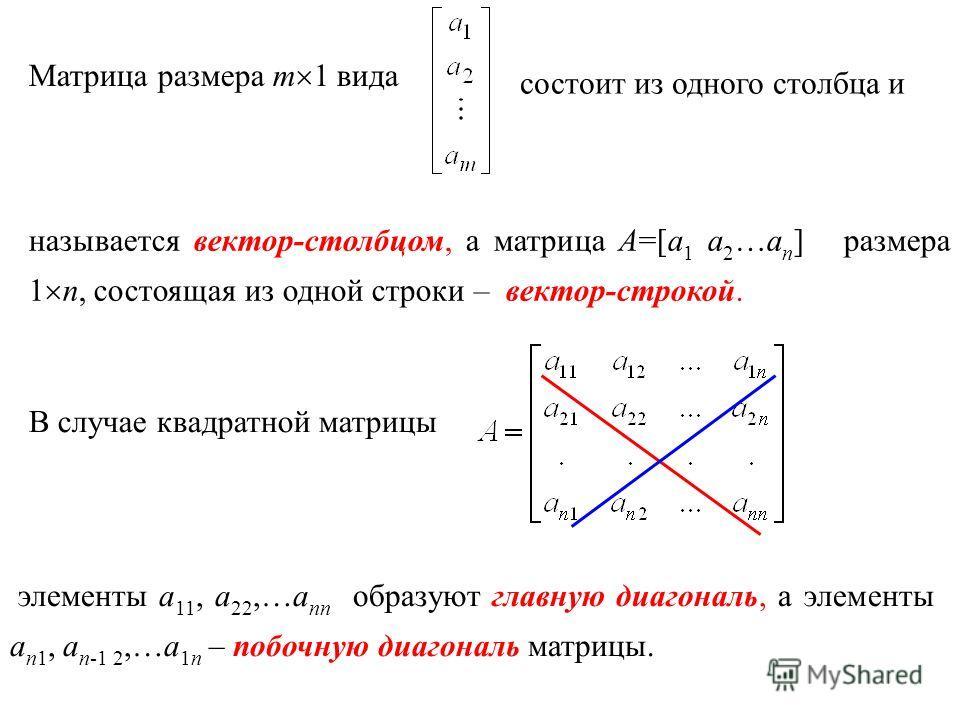 называется вектор-столбцом, а матрица A=[a 1 a 2 …a n ] размера 1 n, состоящая из одной строки – вектор-строкой. Матрица размера m 1 вида состоит из одного столбца и В случае квадратной матрицы элементы a 11, a 22,…a nn образуют главную диагональ, а