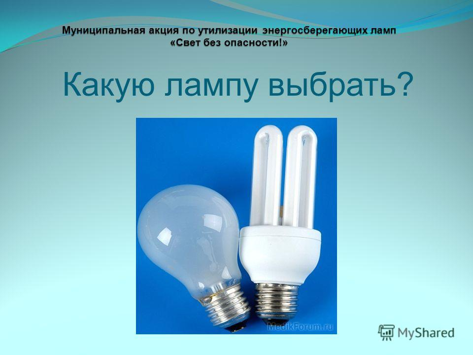 Какую лампу выбрать? Муниципальная акция по утилизации энергосберегающих ламп «Свет без опасности!»
