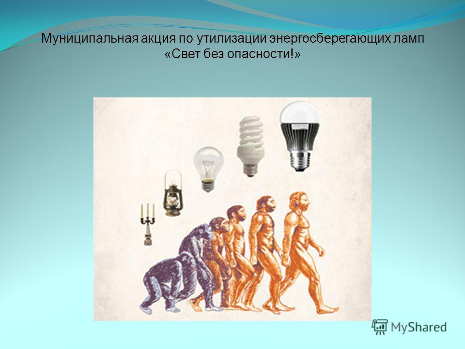 Муниципальная акция по утилизации энергосберегающих ламп «Свет без опасности!»