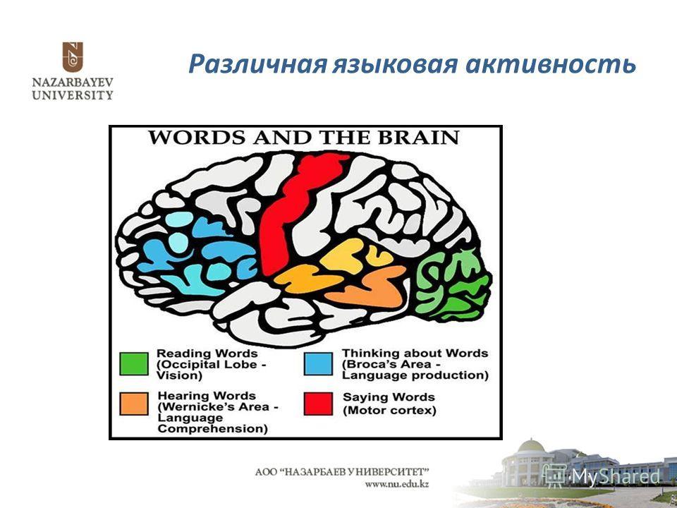 Различная языковая активность