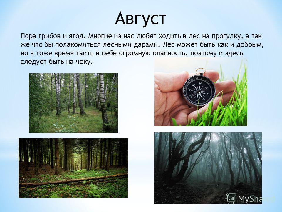 Август Пора грибов и ягод. Многие из нас любят ходить в лес на прогулку, а так же что бы полакомиться лесными дарами. Лес может быть как и добрым, но в тоже время таить в себе огромную опасность, поэтому и здесь следует быть на чеку.