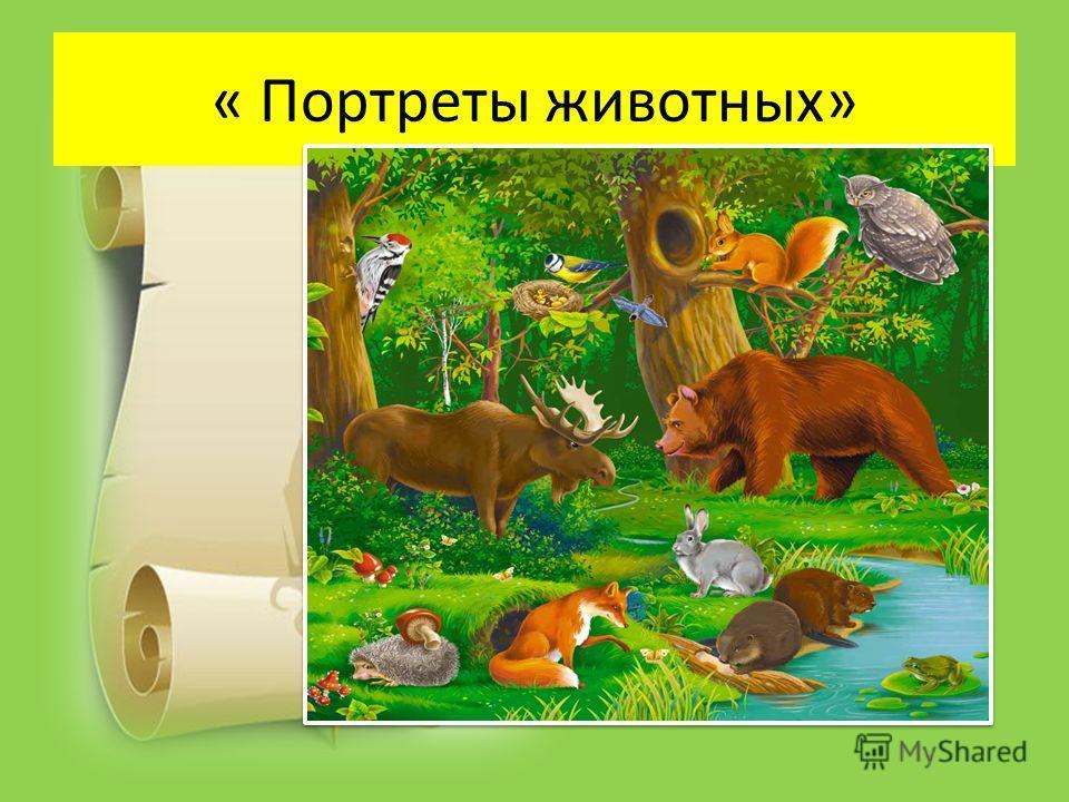 « Портреты животных»