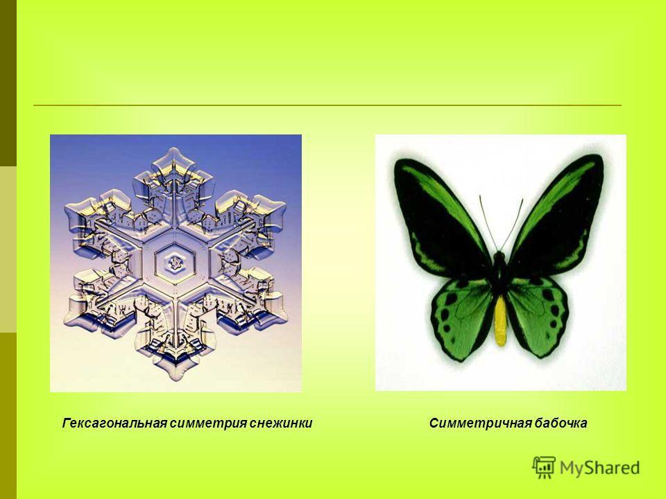 Гексагональная симметрия снежинки Симметричная бабочка