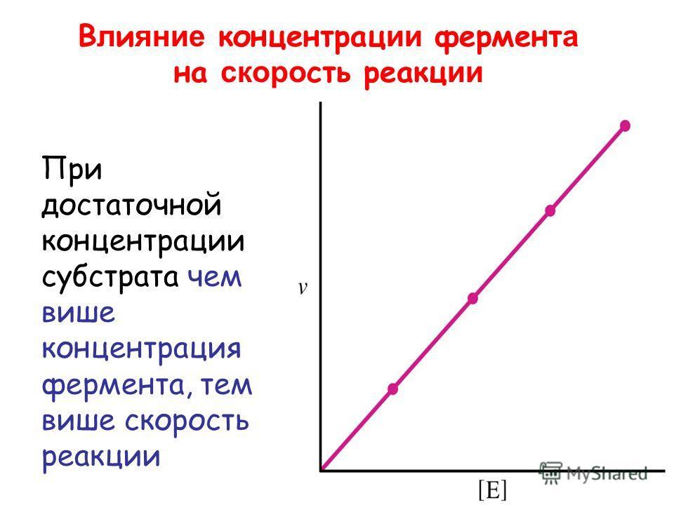 В л и яние концентрации фермент а на скорость реакции При достаточной концентрации субстрата чем выше концентрация фермента, тем выше скорость реакции