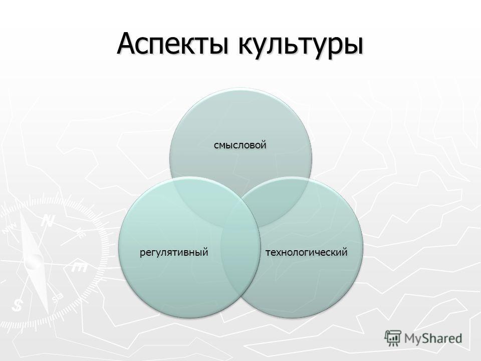 Аспекты культуры смысловой технологический регулятивный