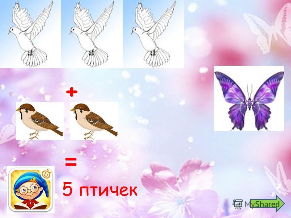 5 птичек + =