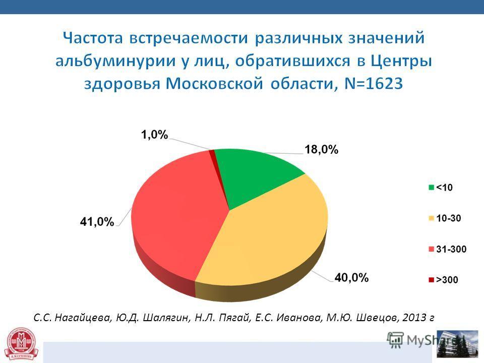 С.С. Нагайцева, Ю.Д. Шалягин, Н.Л. Пягай, Е.С. Иванова, М.Ю. Швецов, 2013 г