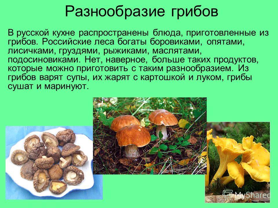 Разнообразие грибов В русской кухне распространены блюда, приготовленные из грибов. Российские леса богаты боровиками, опятами, лисичками, груздями, рыжиками, маслятами, подосиновиками. Нет, наверное, больше таких продуктов, которые можно приготовить