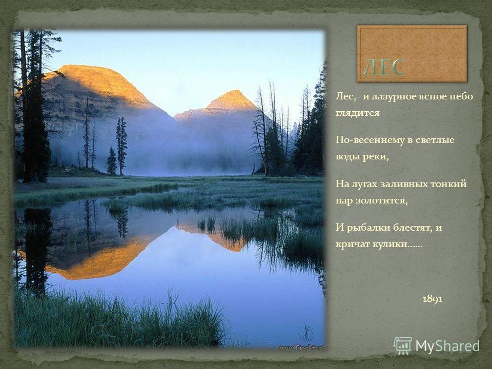 Лес,- и лазурное ясное небо глядится По-весеннему в светлые воды реки, На лугах заливных тонкий пар золотится, И рыбалки блестят, и кричат кулики…… 1891