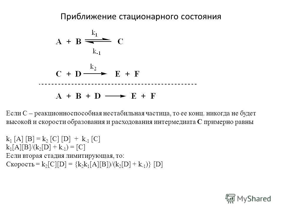 Приближение стационарного состояния Если С – реакционно способная нестабильная частица, то ее конц. никогда не будет высокой и скорости образования и расходования интермедиата С примерно равны k 1 [A] [B] = k 2 [C] [D] + k -1 [C] k 1 [A][B]/(k 2 [D]