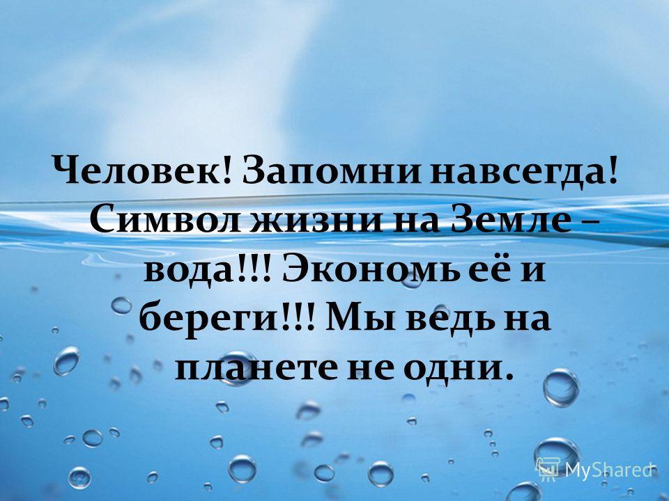 Человек! Запомни навсегда! Символ жизни на Земле – вода!!! Экономь её и береги!!! Мы ведь на планете не одни.