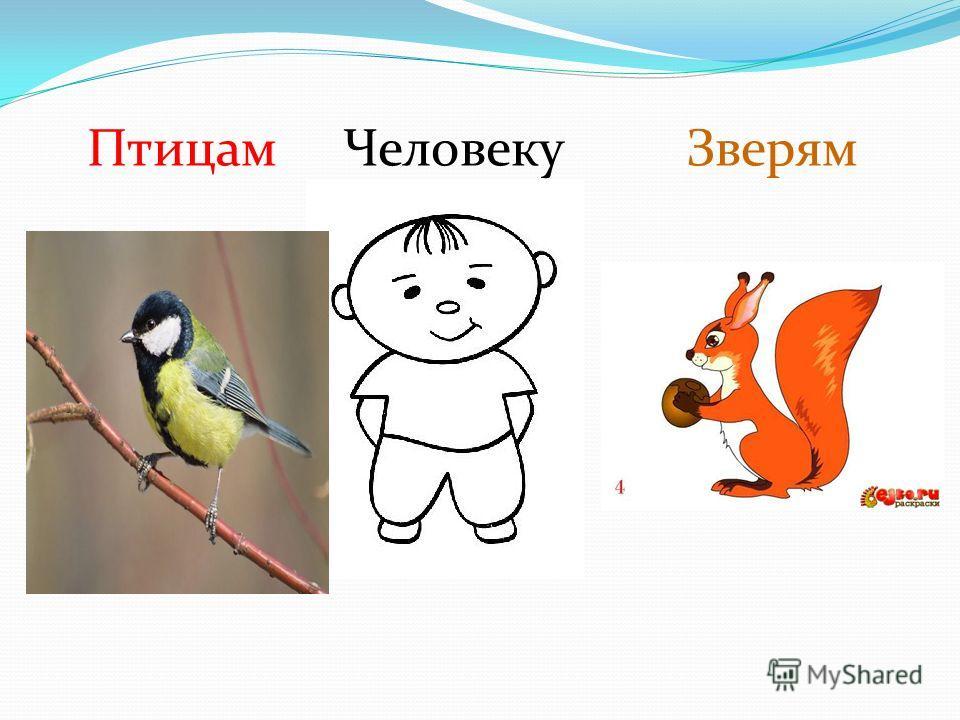 Птицам Человеку Зверям