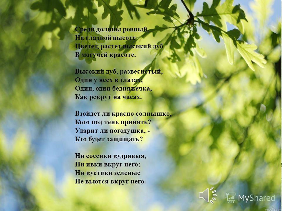 Среди долины ровный, На гладкой высоте Цветет, растет высокий дуб В могучей красоте. Высокий дуб, развесистый, Один у всех в глазах; Один, один бедняжечка, Как рекрут на часах. Взойдет ли красно солнышко, Кого под тень принять? Ударит ли погодушка, -