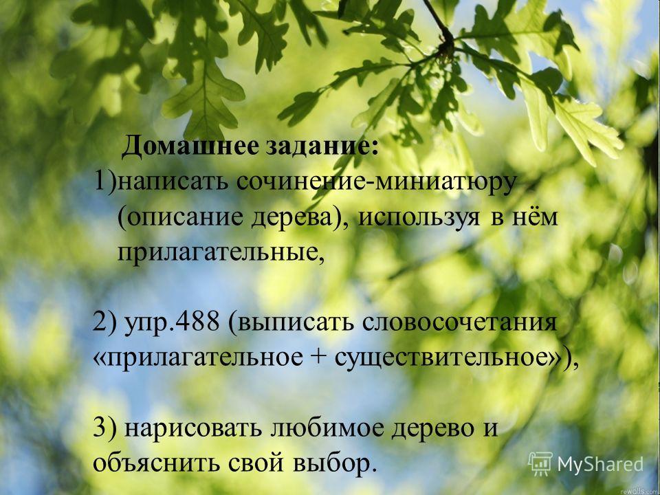 Домашнее задание: 1)написать сочинение-миниатюру (описание дерева), используя в нём прилагательные, 2) упр.488 (выписать словосочетания «прилагательное + существительное»), 3) нарисовать любимое дерево и объяснить свой выбор.