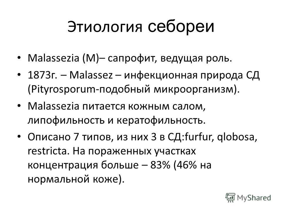 Этиология себореи Malassezia (М)– сапрофит, ведущая роль. 1873 г. – Malassez – инфекционная природа СД (Pityrosporum-подобный микроорганизм). Malassezia питается кожным салом, липофильность и кератофильность. Описано 7 типов, из них 3 в СД:furfur, ql