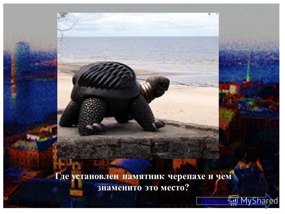 Где установлен памятник черепахе и чем знаменито это место? Правильный ответ