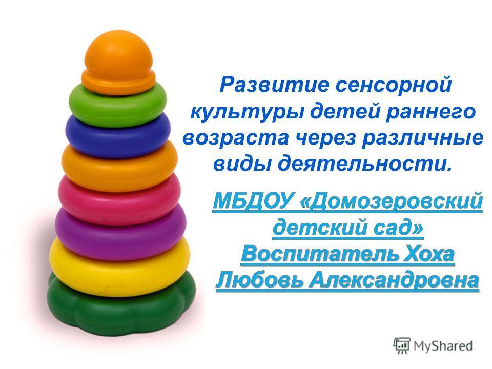 Развитие сенсорной культуры детей раннего возраста через различные виды деятельности.