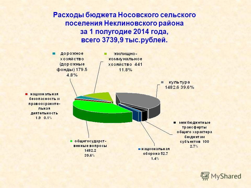 Расходы бюджета Носовского сельского поселения Неклиновского района за 1 полугодие 2014 года, всего 3739,9 тыс.рублей.