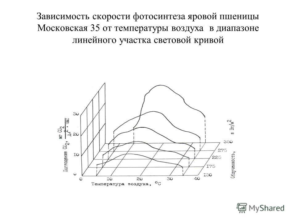 Зависимость скорости фотосинтеза яровой пшеницы Московская 35 от температуры воздуха в диапазоне линейного участка световой кривой